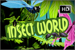 slot online gratis insect world