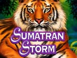 slot machine sumatran storm