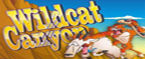 slot gratis wildcat canyon