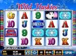 slot online wild huskies