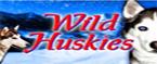 slot wild huskies gratis